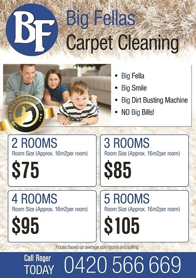 carpet cleaning web